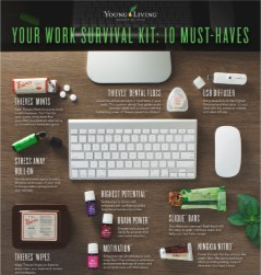Work Survival Kit - Young Living