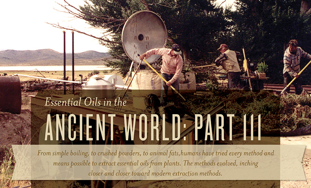 Ancient World Part 3 - Young Living