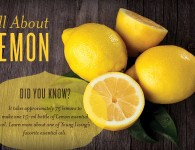 All About Lemon - Young Living