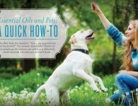Pets-Animals and Essential Oils - Young Living