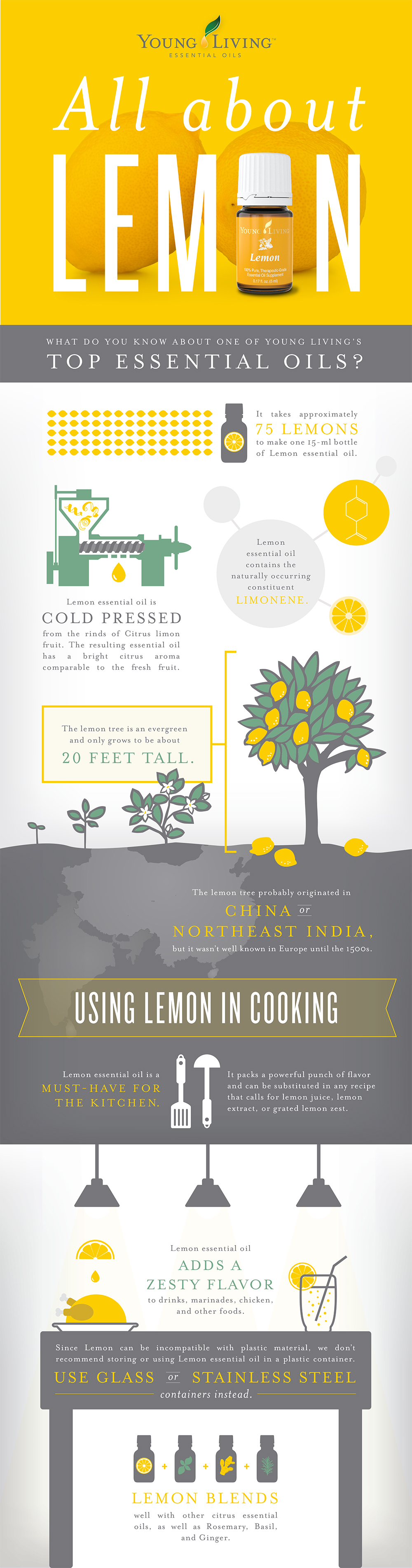 All About Lemon Oil Infographic