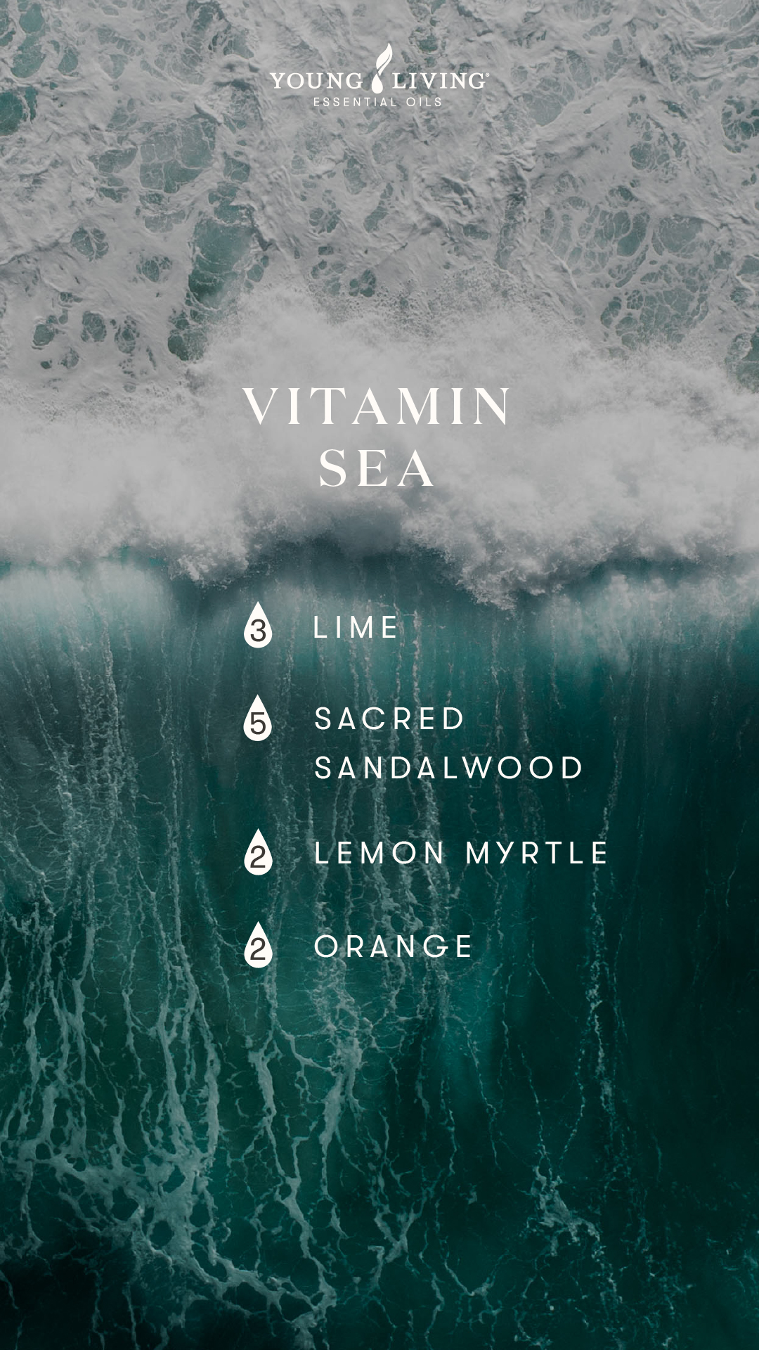 Vitamin sea summer diffuser blend