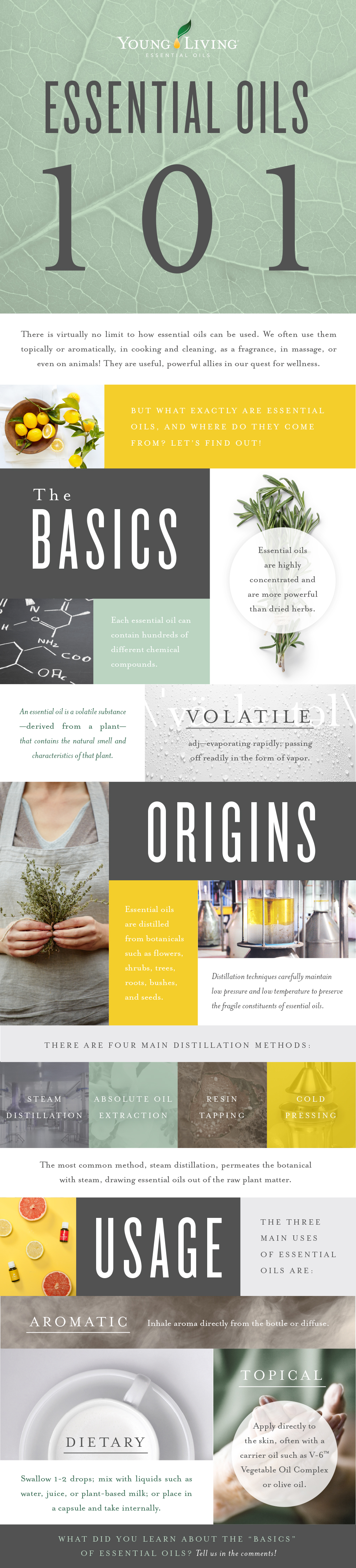 Essential Oils 101: The Basics - Young Living