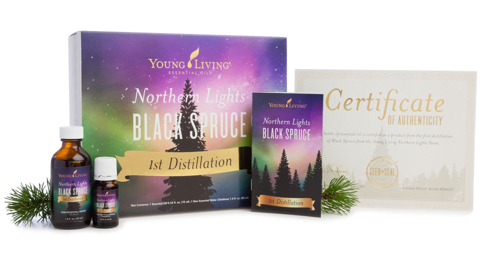 Northern Lights Black Spruce 1st Distillation Edition - Young Living