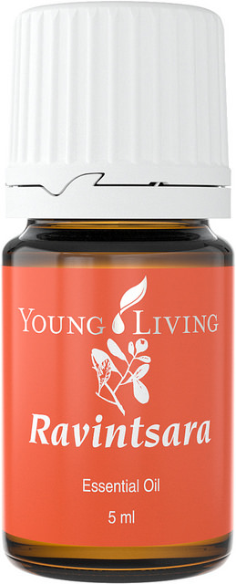 Ravintsara Essential Oil - Young Living