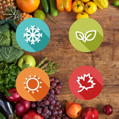 Tile_fruits for all seasons