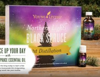 Young Living Northern Lights Black Spruce Header