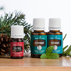 Young Living January 2016 PV Promotion