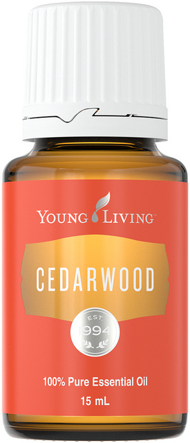 Cedarwood - Young Living Essential Oil