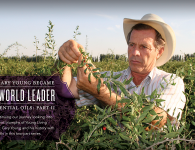 Gary Young Leader In Essential Oils