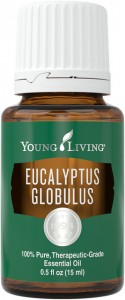 Young Living Eucalyptus Globulus Essential Oil