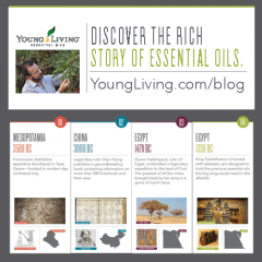 Young Living Essential Oils: A Timeline