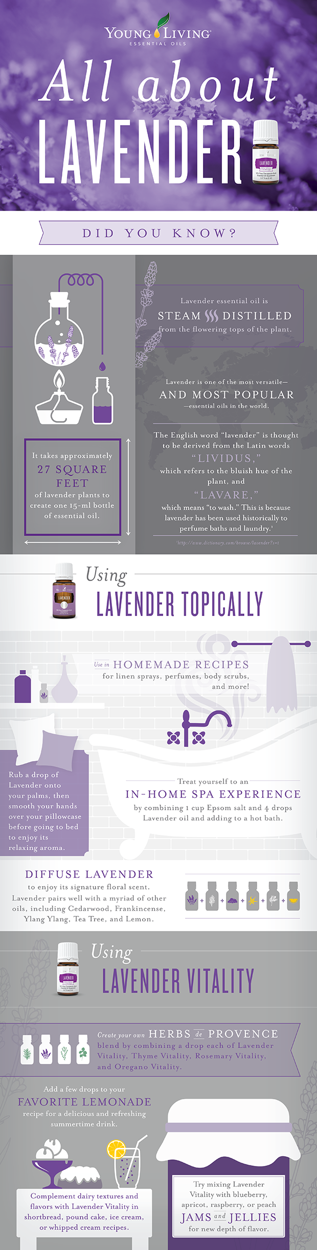 Young Living All About Lavender infographic- Lavender Essential Oil and Lavender Vitality Essential Oil and Uses