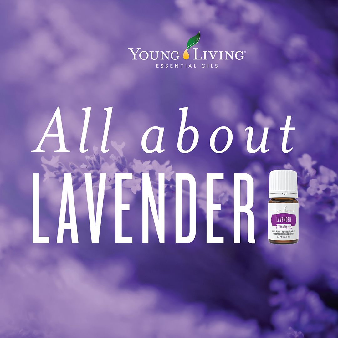 Uses for Young Living Lavender Oil and Lavender Vitality Essential Oil