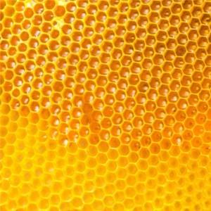 Honey Lime Marinade Recipe