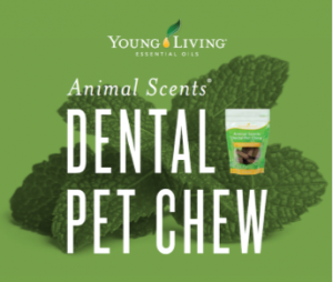 Young Living - Animal Scents Dental Pet Chew