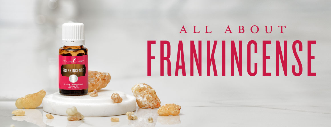 All About Frankincense Infographic - Young Living - Frankincense Essential Oil and Frankincense Vitality Essential Oil