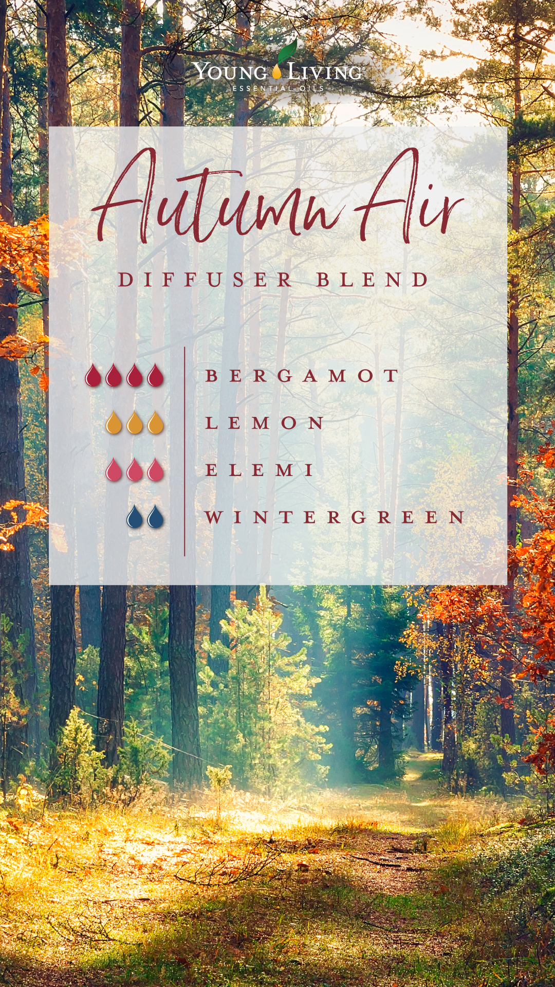 Diy Autumn Essential Oil Blends