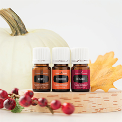 Diffuser recipes with the best essential oils for the season