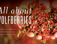 All About Wolfberries Header