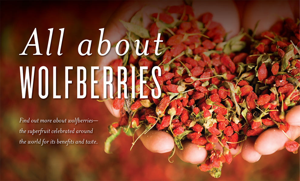 what is wolfberry