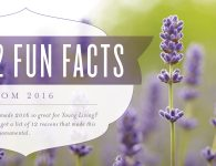 Young Living End of Year in Review