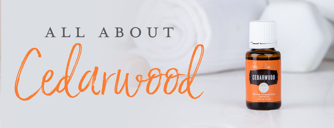 All About Cedarwood essential oil