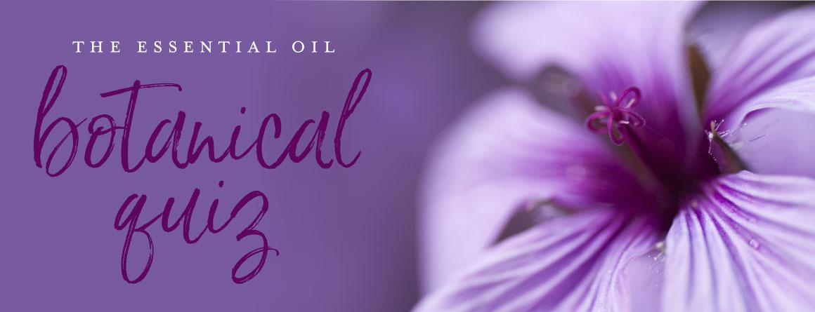 The essential oils botanical quiz