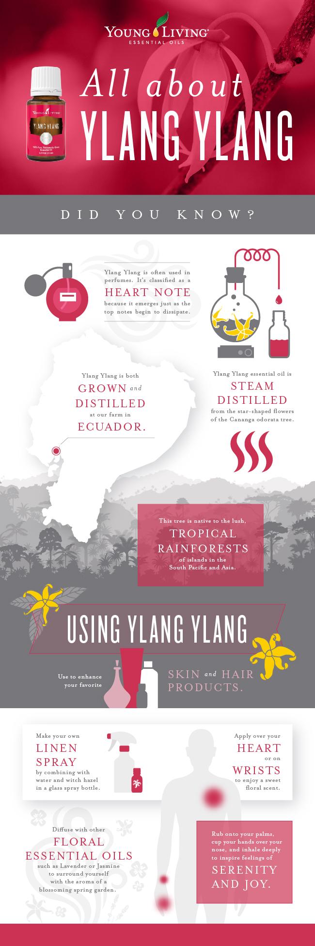 Ylang Ylang Oil Uses Young Living Blog