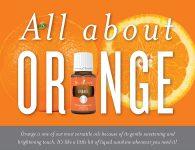 All About Orange Header