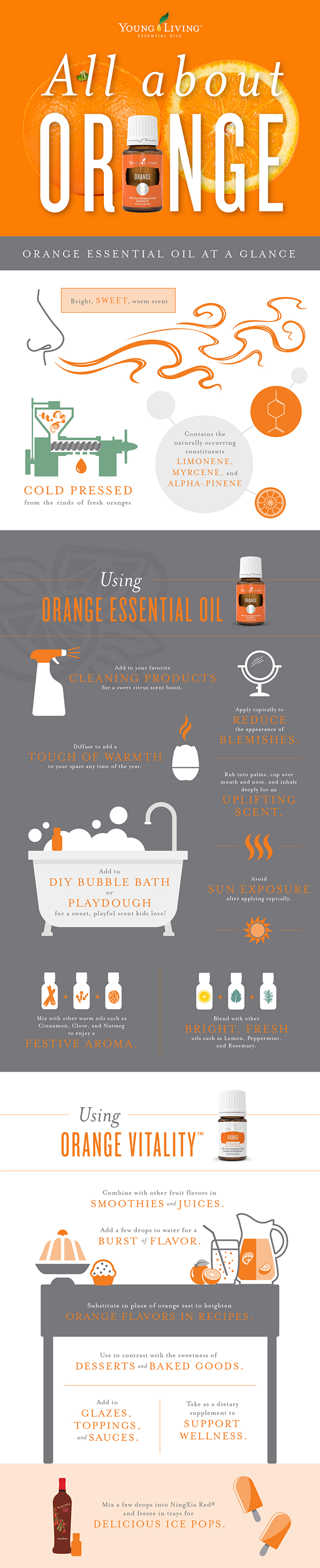All About Orange Infographic