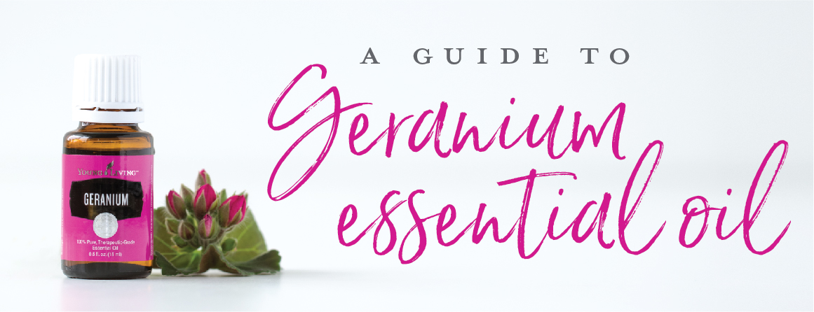A guide to Geranium essential oil