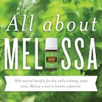 All About Melissa Essential Oil