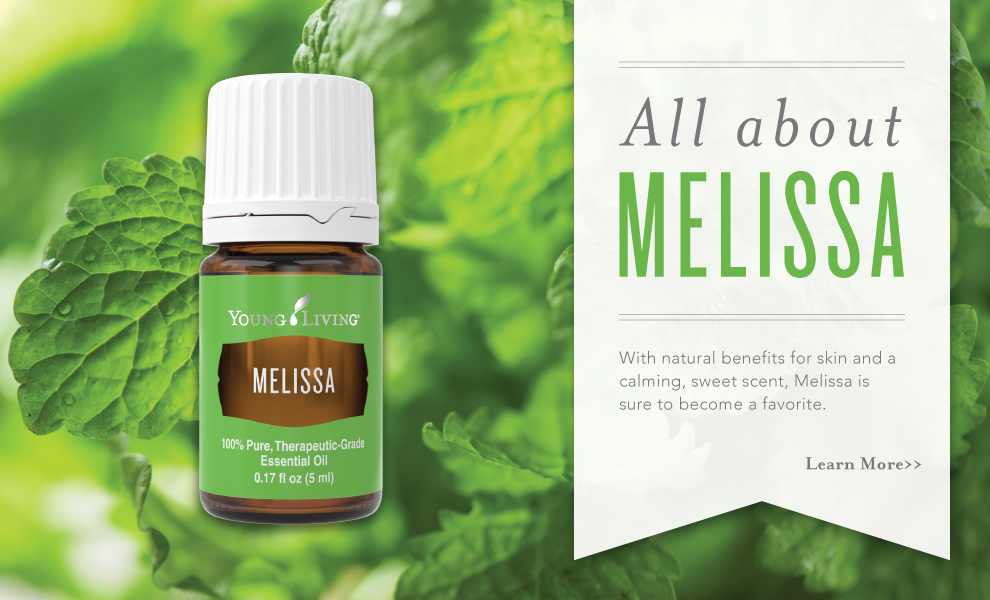 All About Melissa Essential Oil Infographic