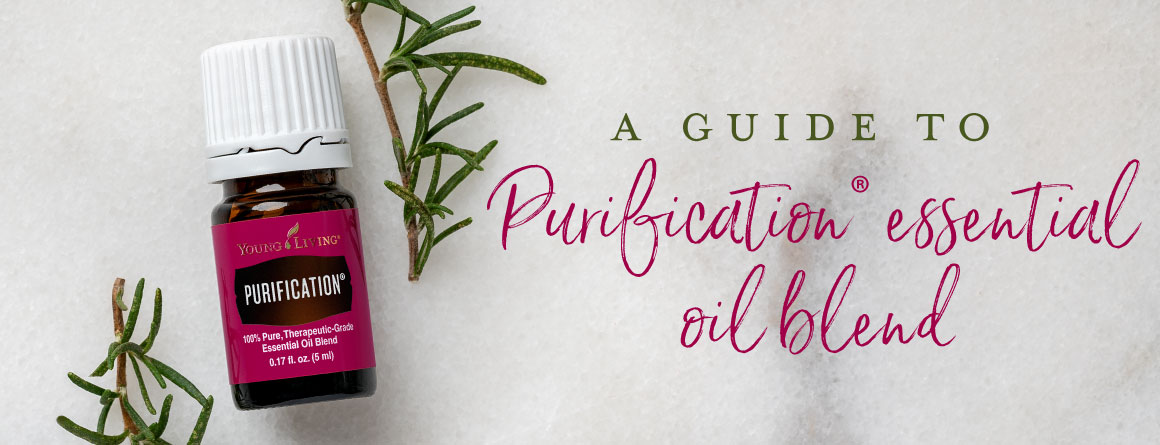 A guide to Purification essential oil blend
