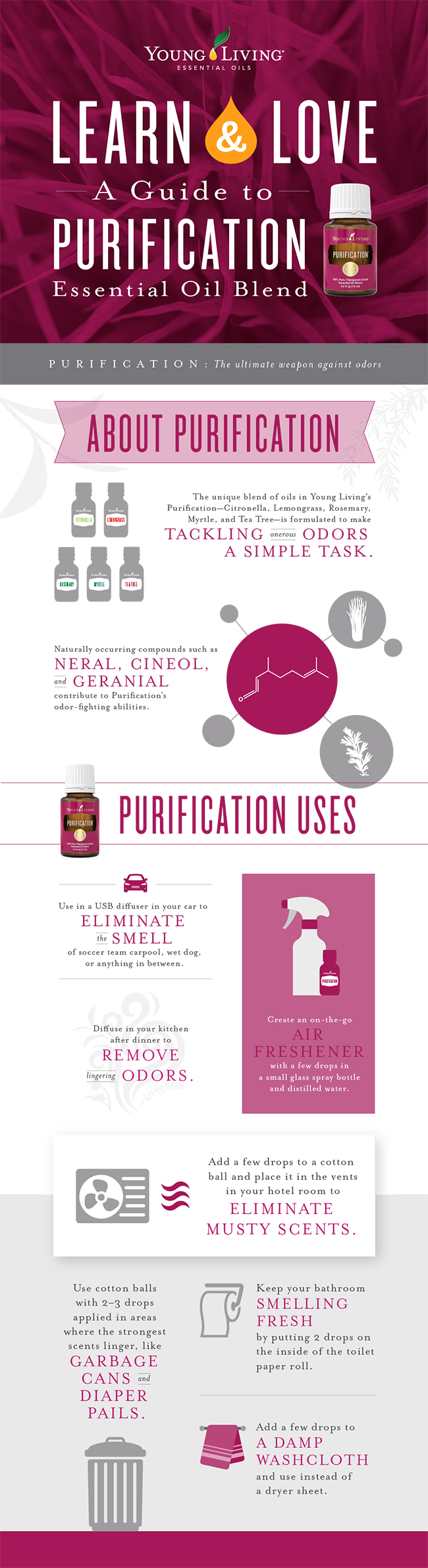 Purification essential oil learn and love