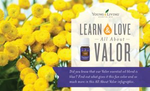 Learn about Valor essential oil blend Infographic
