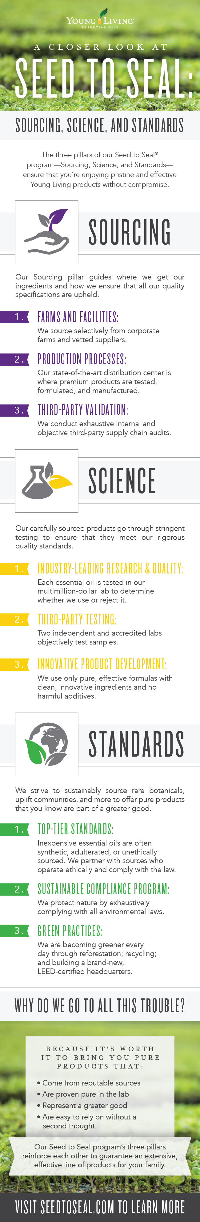 A closer look at Seed to Seal: Sourcing, Science, and Standards Infographic