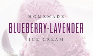 Homemade Blueberry Lavender Ice Cream Recipe