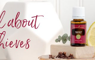 All about Thieves essential oil | Young Living essential oil