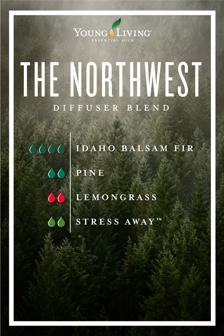 The Northwest essential oil diffuser blend
