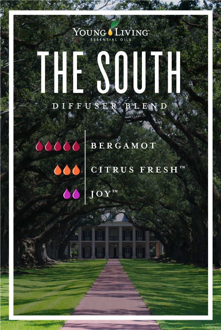 The South essential oil diffuser blend