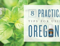 benefits and uses of Oregano essential oil