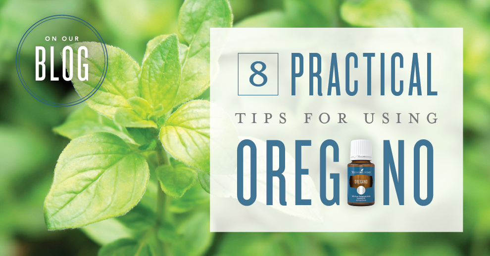 8 practical tips for using Oregano