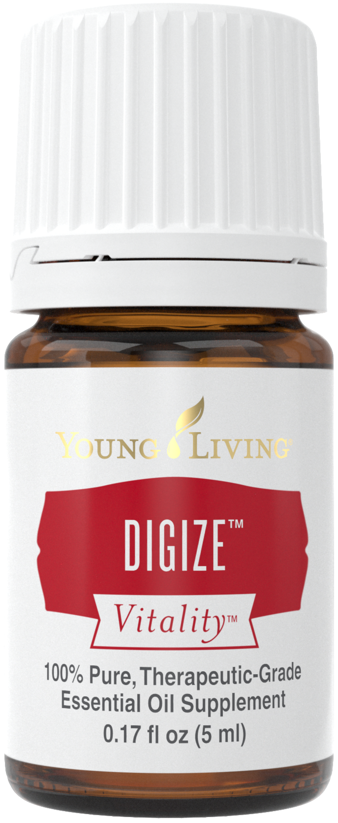Digize Vitality benefits and uses