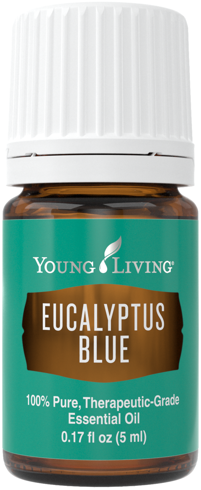 Eucalyptus Blue essential oil