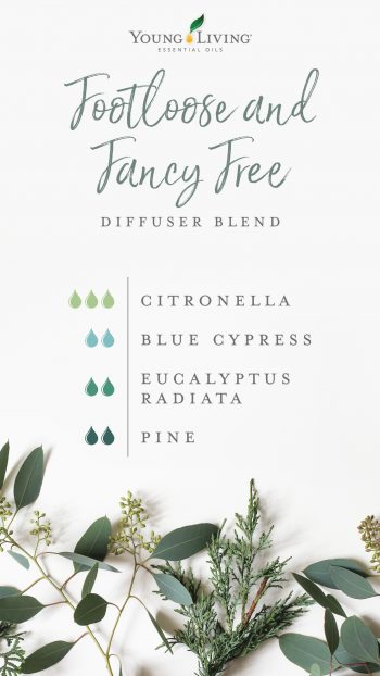 3 drops Citronella 2 drops Blue Cypress 2 drops Eucalyptus Radiata 2 drops Pine