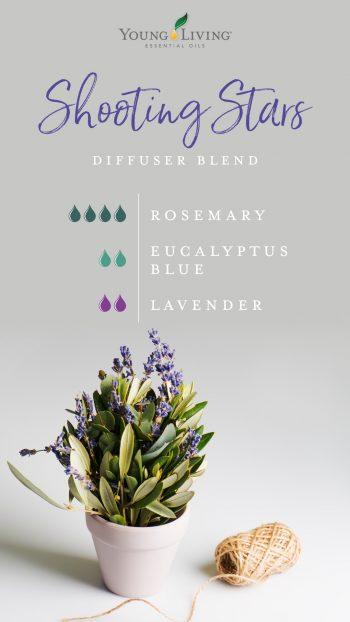 4 drops Rosemary 2 drops Eucalyptus Blue 2 drops Lavender