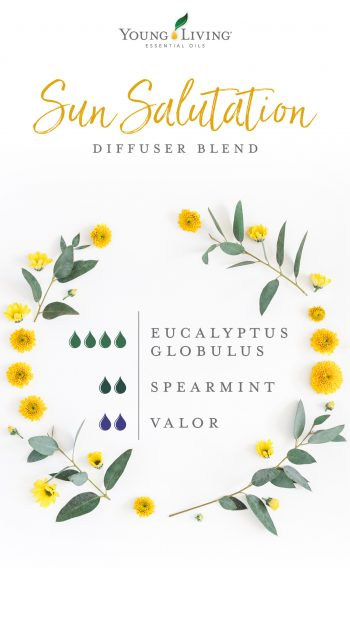 4 drops Eucalyptus Globulus 2 drops Spearmint 2 drops Valor