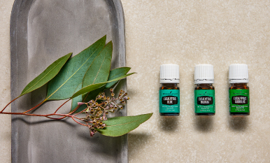 How to use Eucalyptus essential oil from head to toe